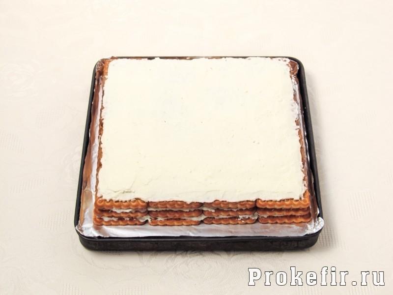 Торт без выпечки из печеня и творога с кефиром: фото 8