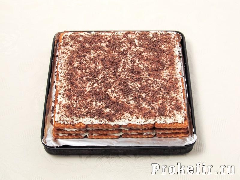 Торт без выпечки из печеня и творога с кефиром: фото 9